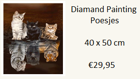 diamond-painting-poesjes
